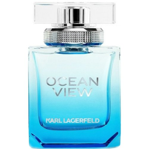 Karl Lagerfeld Ocean View for Women 85 мл тестер (жен)