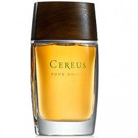 Cereus � 11 4311 ����
