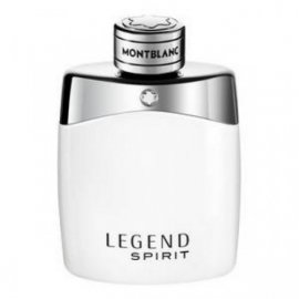 Legend Spirit 8831 фото