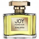 Joy Forever  фото