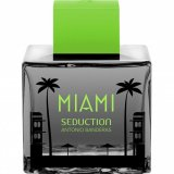 Miami Seduction In Black 20671 фото