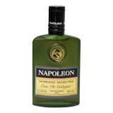Napoleon 41623 фото
