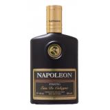 Napoleon Strateg 42548 фото